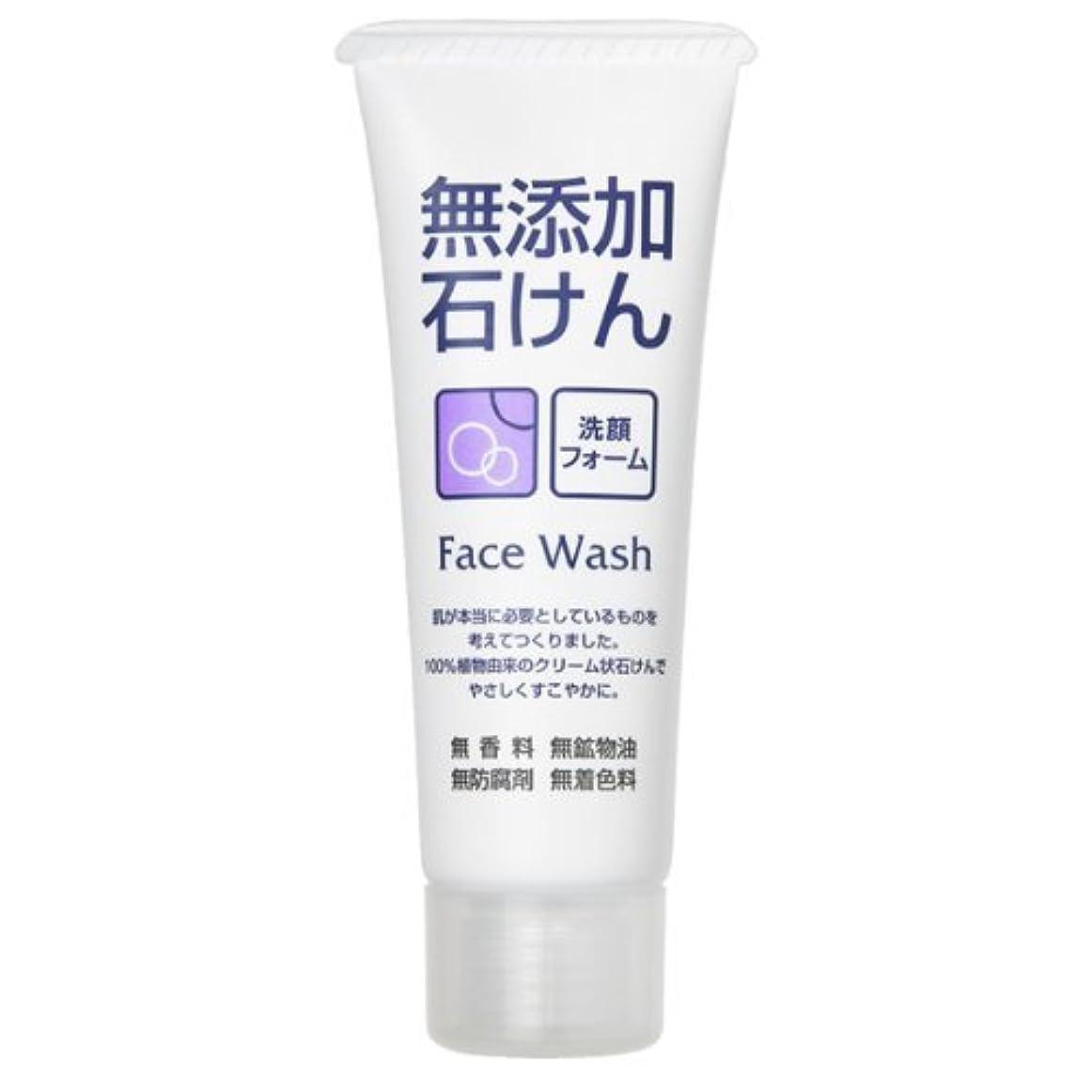 ごちそうパワーセルアンドリューハリディロゼット 無添加石けん 洗顔フォーム 140G 香料・鉱物油・防腐剤・着色料は無添加 face wash フェイスウォッシュ×48点セット (4901696534045)