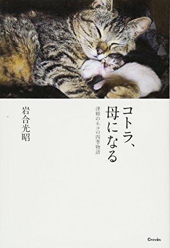 コトラ、母になる—津軽のネコの四季物語