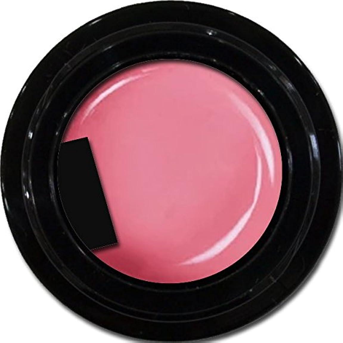 バイバイ誇大妄想光沢カラージェル enchant color gel M212 CoralPink 3g/ マットカラージェル M212コーラルピンク 3グラム