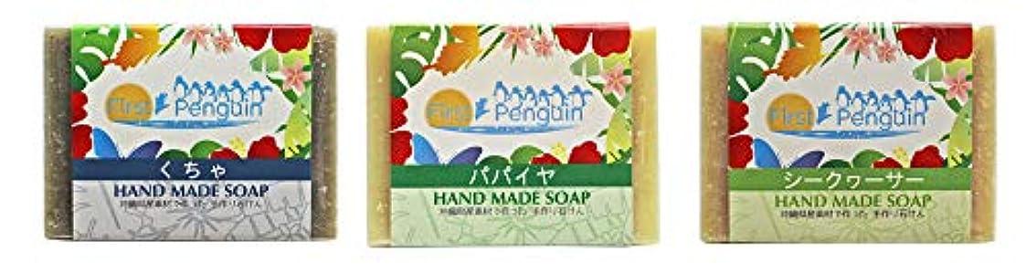 発言するセグメント浸した手作り洗顔石けん (くちゃ、パパイヤ、シークヮーサー)