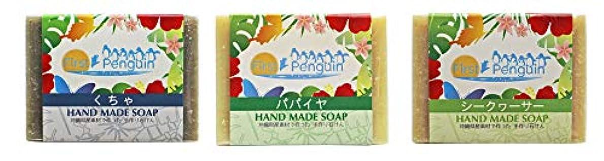 側溝熟達した単なる手作り洗顔石けん (くちゃ、パパイヤ、シークヮーサー)