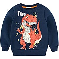 HUAER& Little Boys Winter Cartoon Pattern Sweater Kids Pullovers