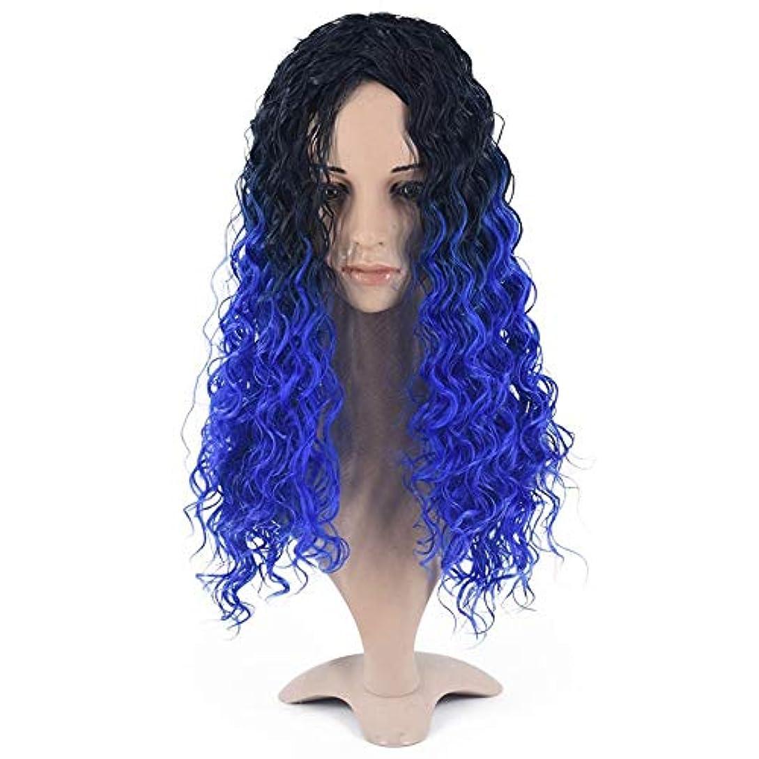 好奇心飼料遺伝的HOHYLLYA 女性ブルーフルウィッグロングヘアウィッグレディースカーリーファッションウィッグコスプレダークルートミドル別れ女性の合成かつらレースかつらロールプレイングかつら (色 : 青)