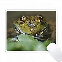 ウサギの肖像、クローズアップ PC Mouse Pad パソコン マウスパッド