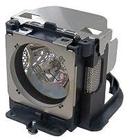 SANYO PLV-Z2000 Replacement Projector Lamp 610-336-5404/LMP118 【Creative Arts】 [並行輸入品]