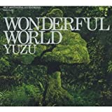 WONDERFUL WORLD(初回限定盤)(DVD付)