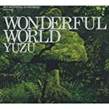 WONDERFUL WORLD(初回限定盤)(DVD付) CD+DVD, Limited Edition 画像