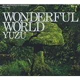 WONDERFUL WORLD(初回限定盤)(DVD付) CD+DVD, Limited Edition