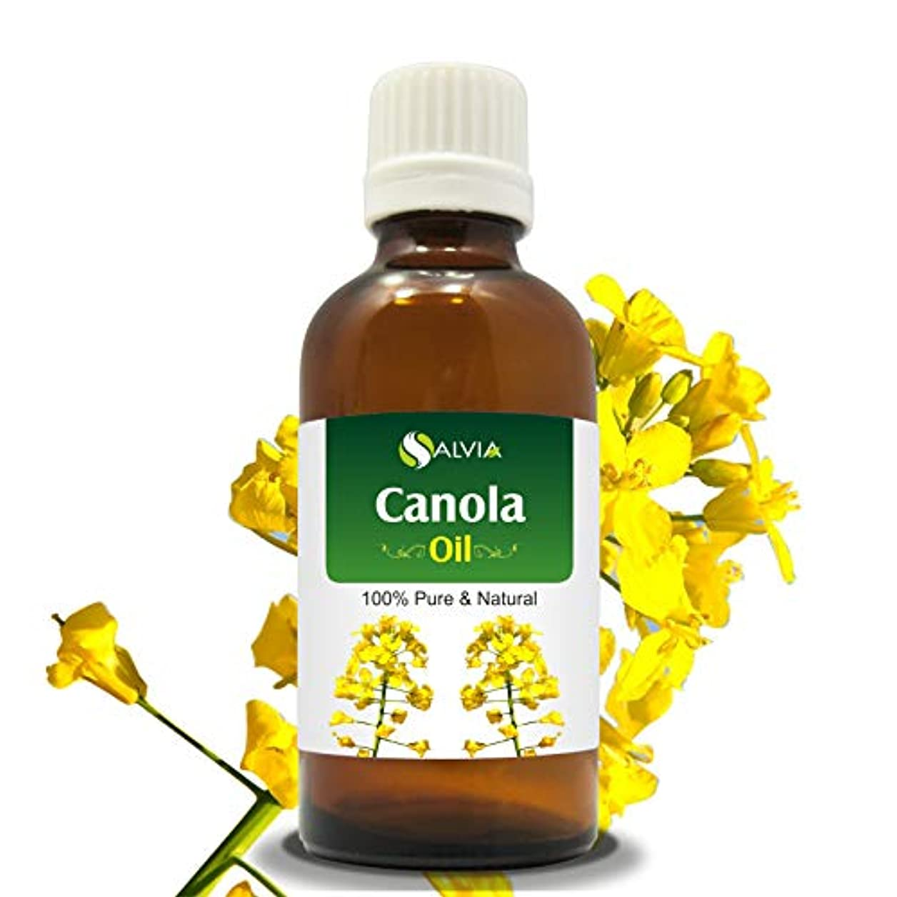フルート力学ポインタCANOLA OIL 100% NATURAL PURE UNDILUTED UNCUT CARRIER OIL 100ML