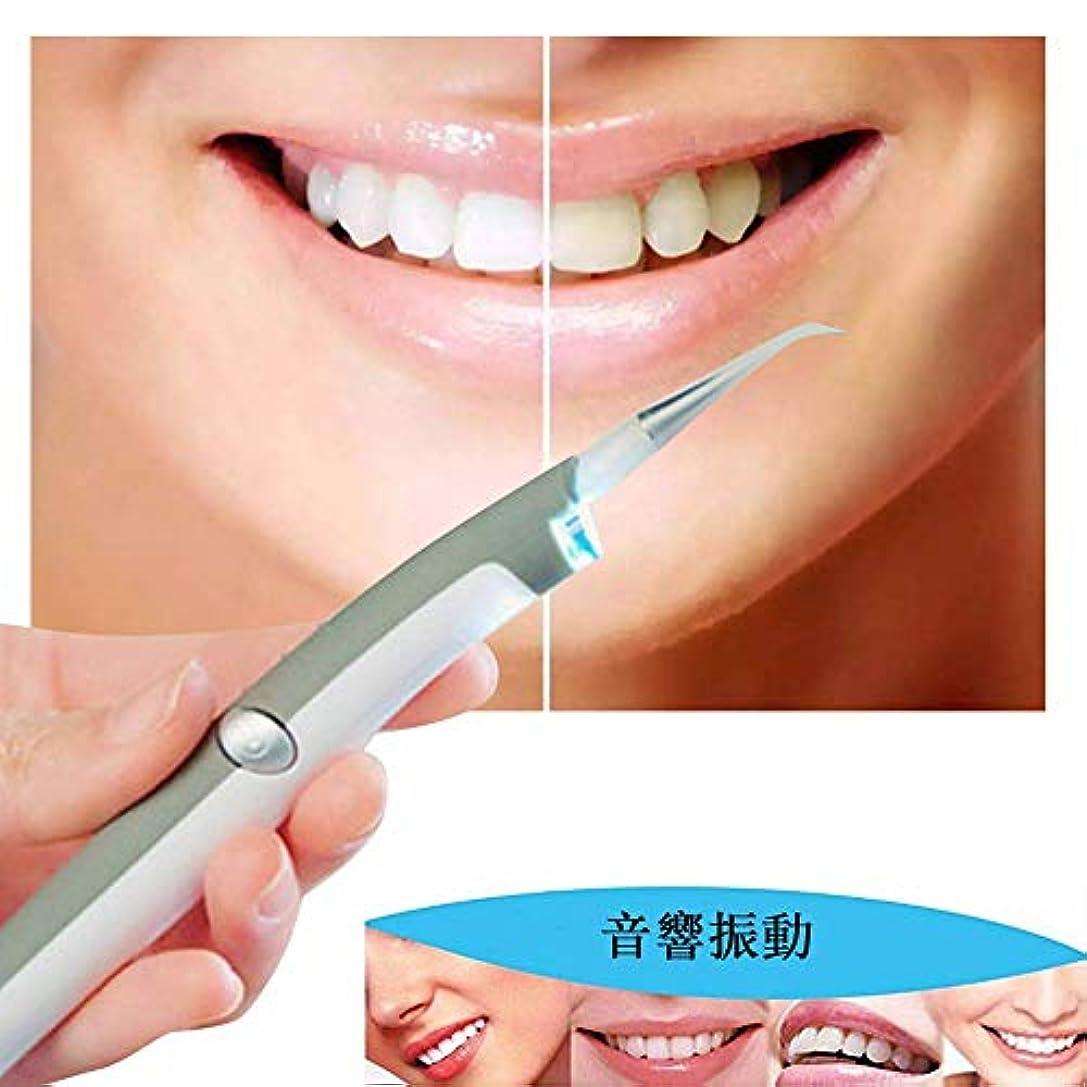 役割診断する活性化するCarejoy LED歯科用歯ステイン消しゴム 電動デンタルステインプラークリムーバー 歯科クリーニングシステム 歯クリーナー 歯科汚れリムーバー LEDの歯汚れ消しゴムプラークリムーバー 口腔衛生ケアのためのプロフェッショナル...