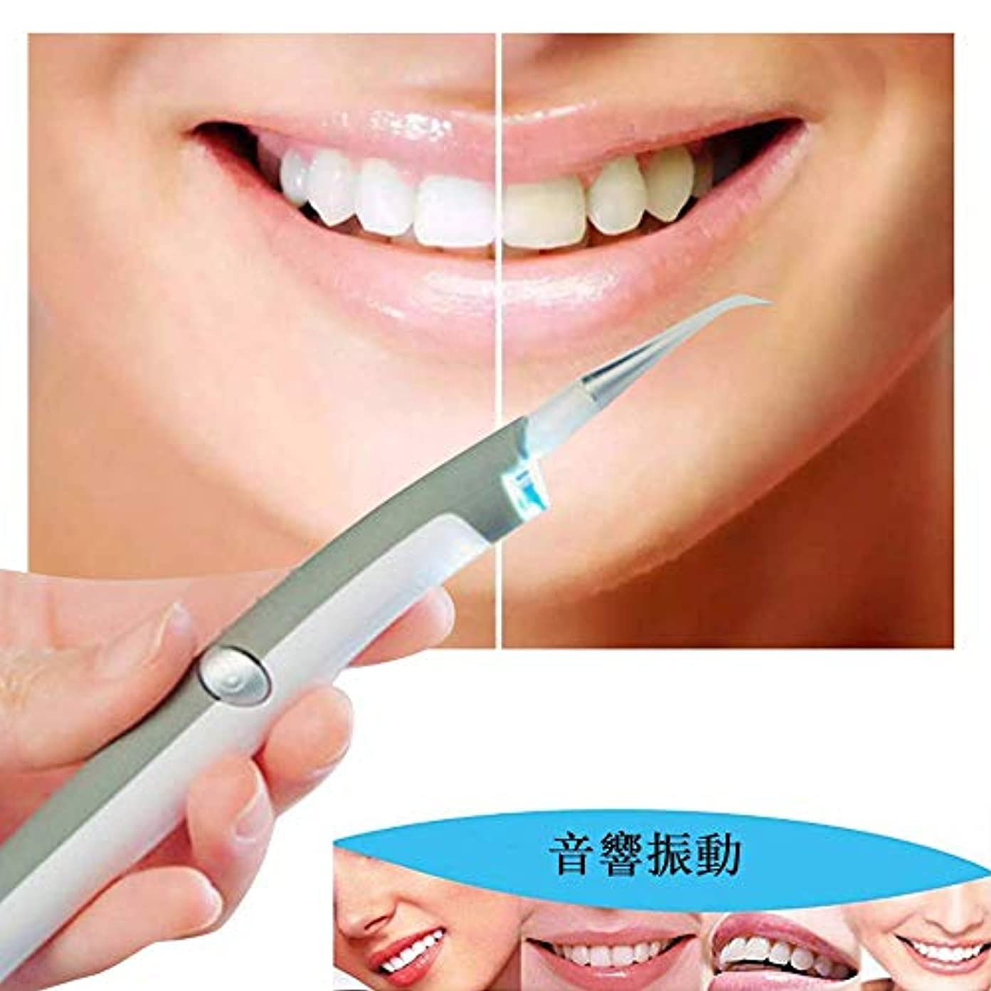 わずらわしいクランプ優先権Carejoy LED歯科用歯ステイン消しゴム 電動デンタルステインプラークリムーバー 歯科クリーニングシステム 歯クリーナー 歯科汚れリムーバー LEDの歯汚れ消しゴムプラークリムーバー 口腔衛生ケアのためのプロフェッショナル...