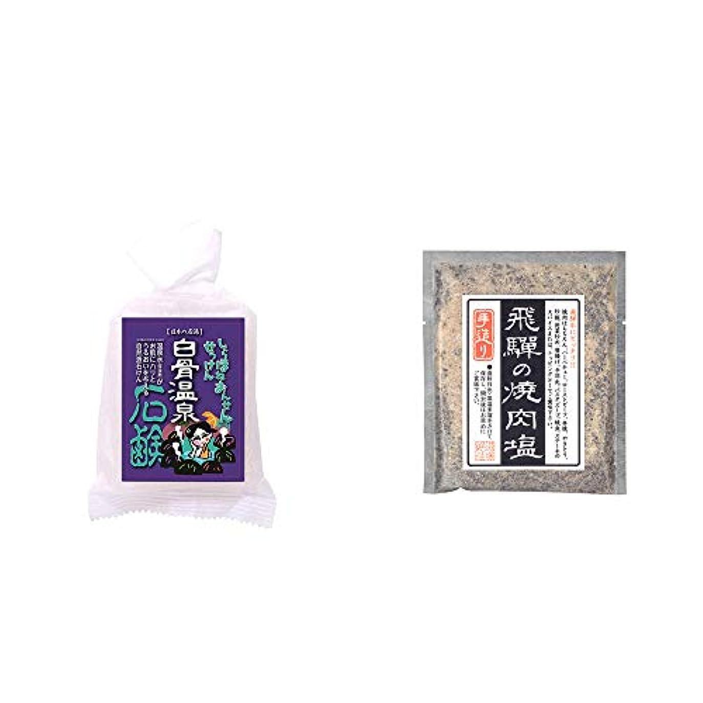 ナサニエル区おもちゃソフトウェア[2点セット] 信州 白骨温泉石鹸(80g)?手造り 飛騨の焼肉塩(80g)