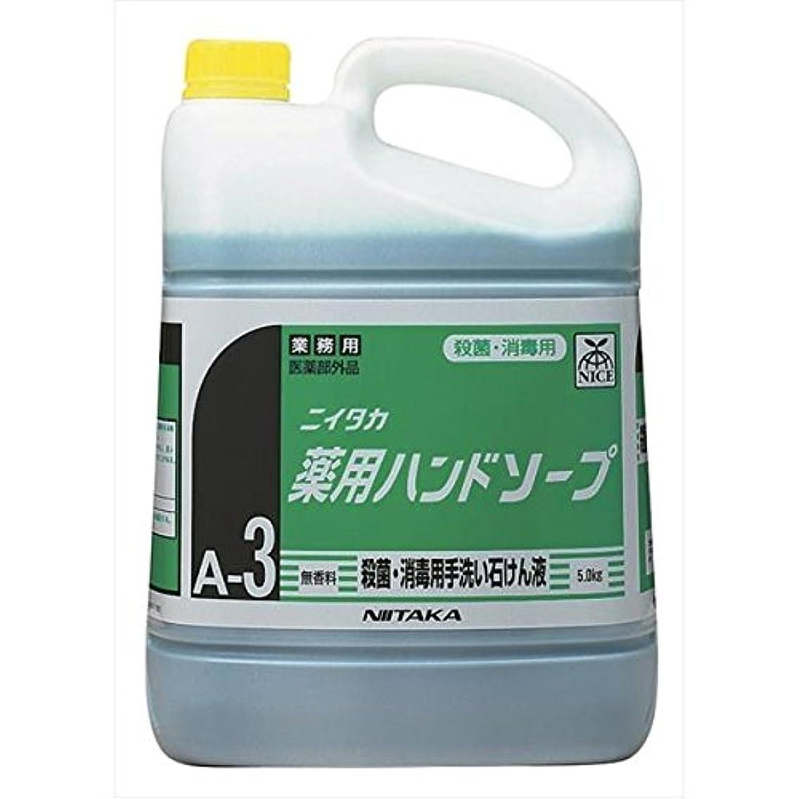 ペイン災害適度なニイタカ:薬用ハンドソープ(A-3) 5kg×3 250140