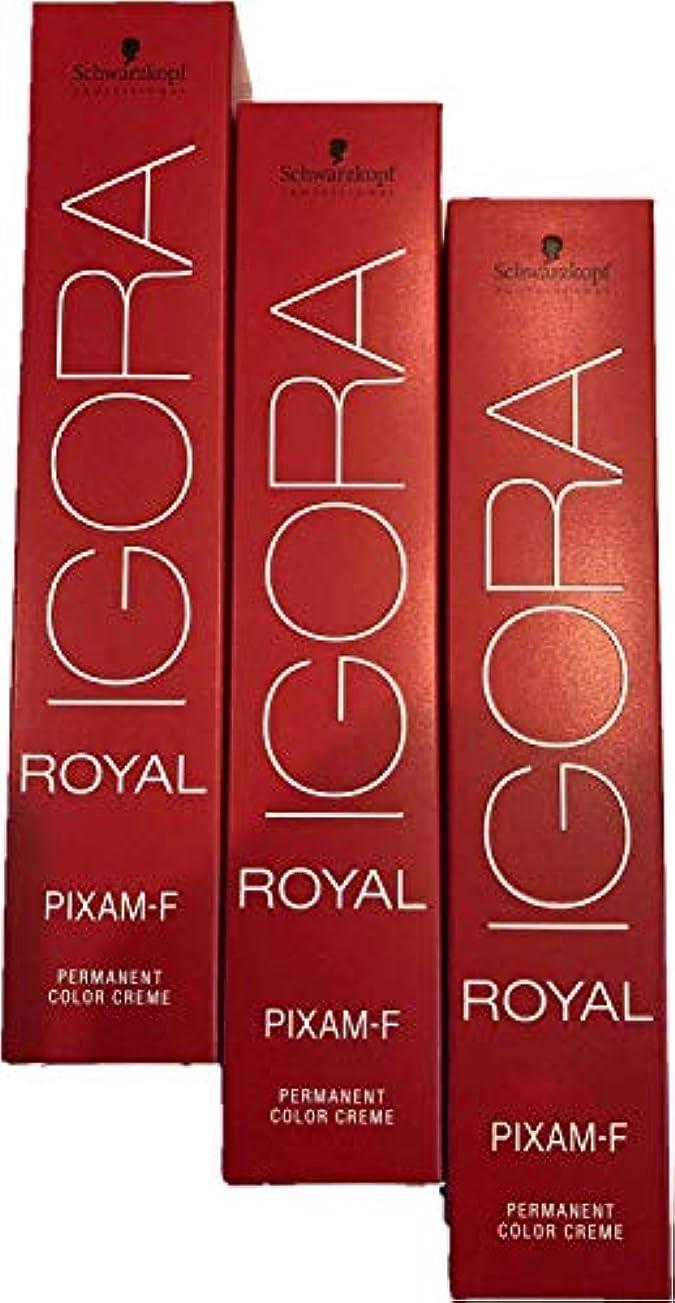私たちのもの差別化する小説家シュワルツコフ イゴラ ロイヤルピクサム-F PTBe10 80g×3本
