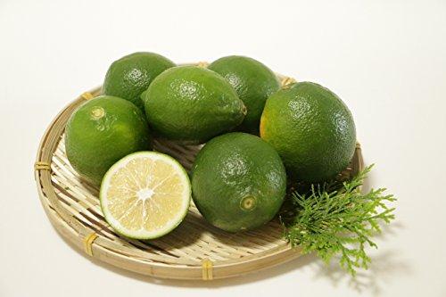 国産 九州産 熊本産 レモン 3キロ 農薬不使用 レモン ノーワックス ビタミンC
