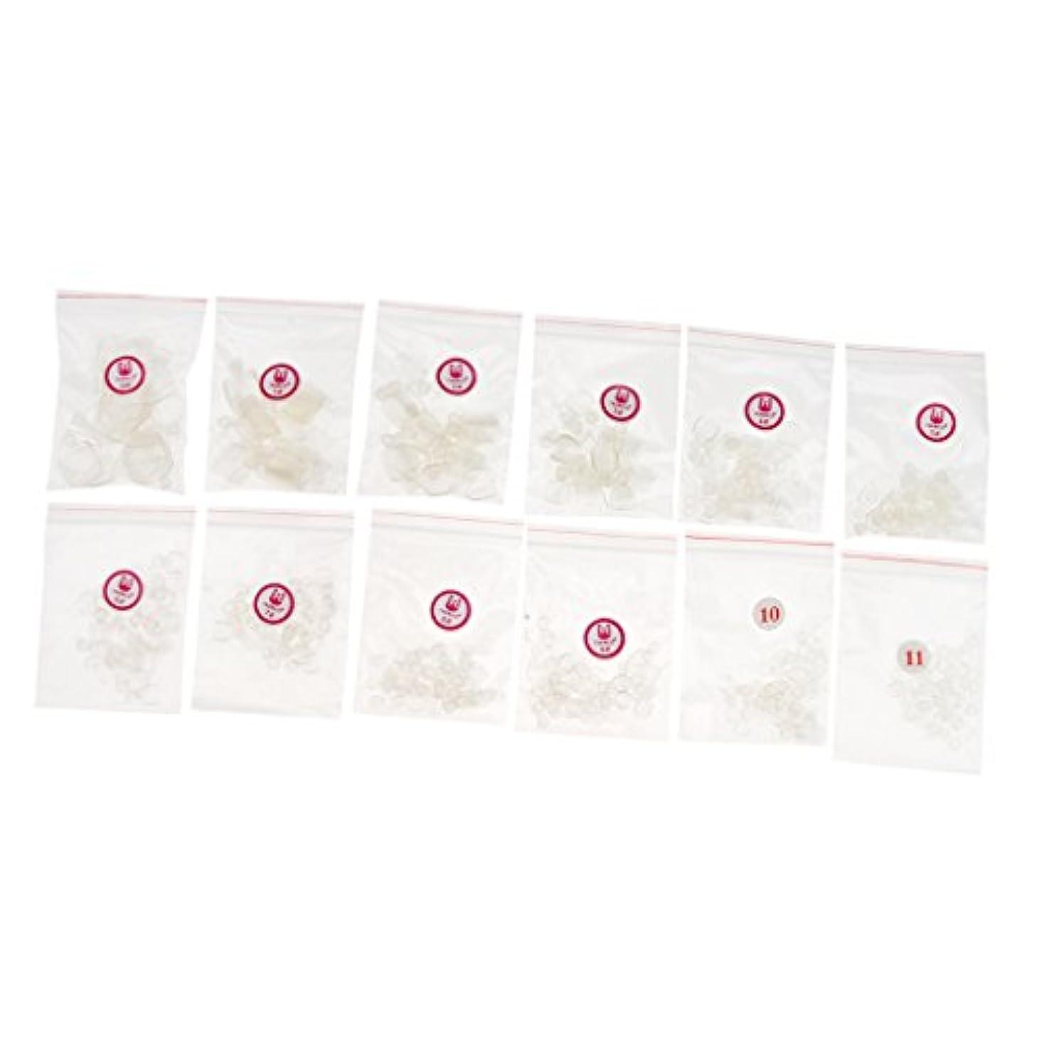 金銭的な思い出させるスコットランド人Fenteer 約504個 ネイルチップ 人工爪 ヒント  ネイルアート トレーニング プラスチック製 マニキュアデザイン 3色選べる - クリア