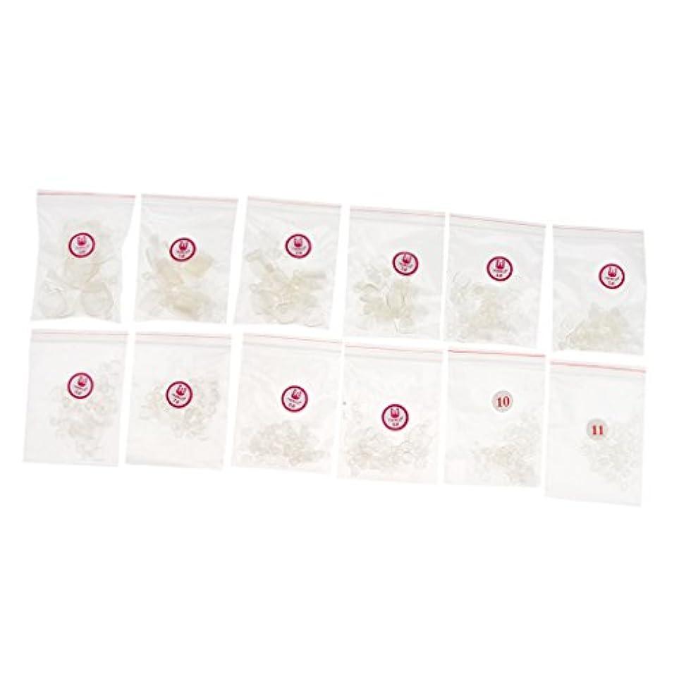 挑発する公使館想定するFenteer 約504個 ネイルチップ 人工爪 ヒント  ネイルアート トレーニング プラスチック製 マニキュアデザイン 3色選べる - クリア