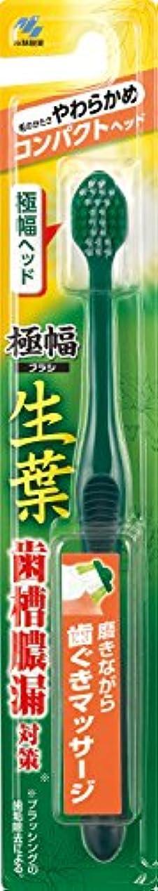 生葉(しょうよう)極幅ブラシ 歯ブラシ コンパクトヘッド やわらかめ