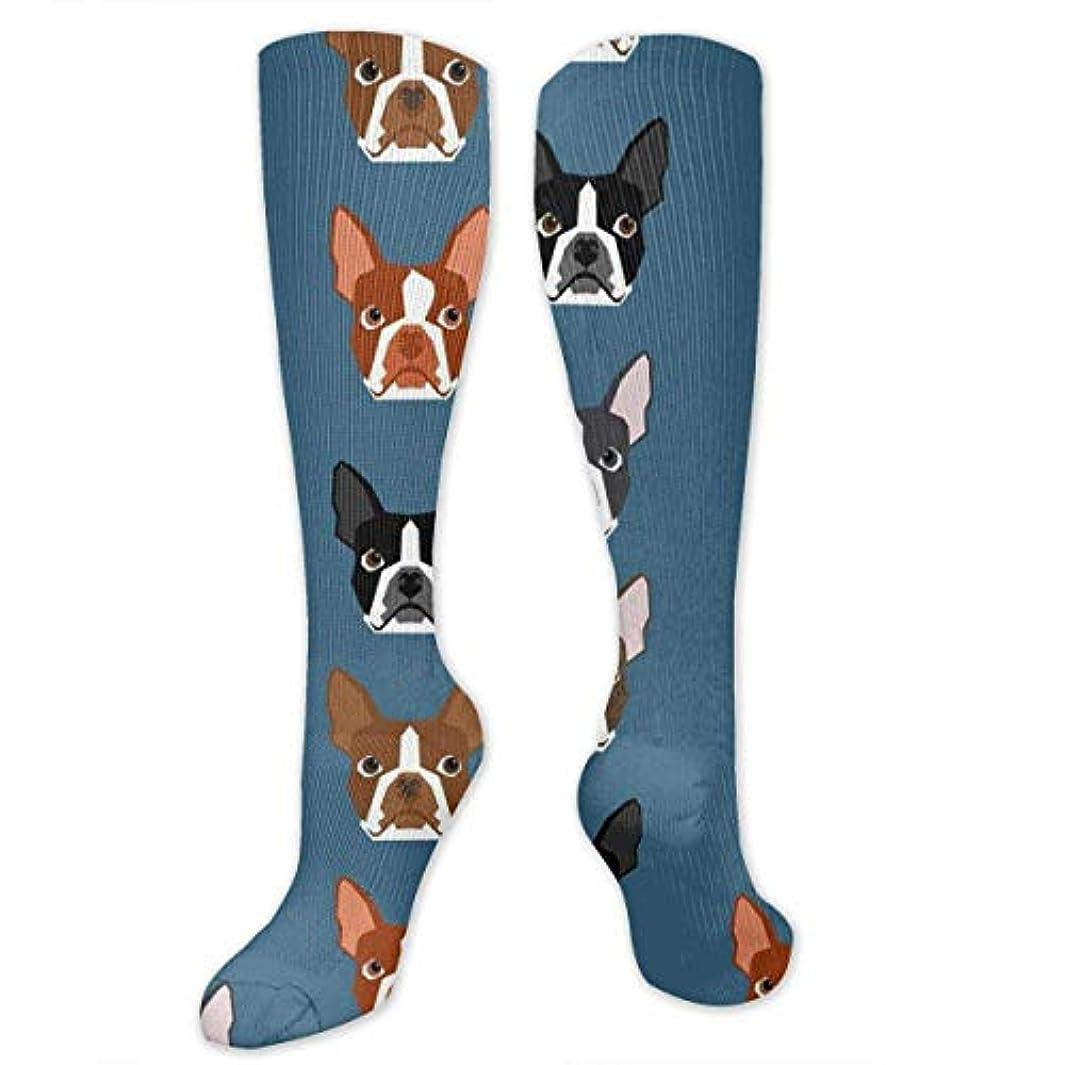 ジョブ無礼に物質靴下,ストッキング,野生のジョーカー,実際,秋の本質,冬必須,サマーウェア&RBXAA Boston Terriers Blue Faces Socks Women's Winter Cotton Long Tube Socks...