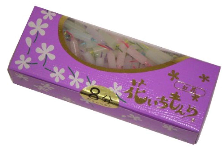 手書きタヒチパーティー佐藤油脂のローソク 花いちもんめ カラー 8分 約300本入