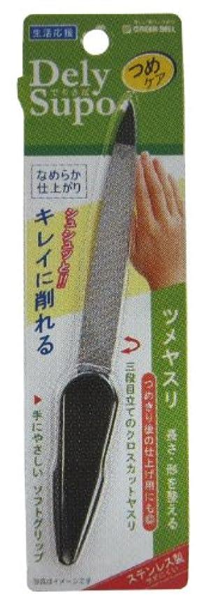 歯痛シダ磁石DelySupo ツメヤスリ GSA-10