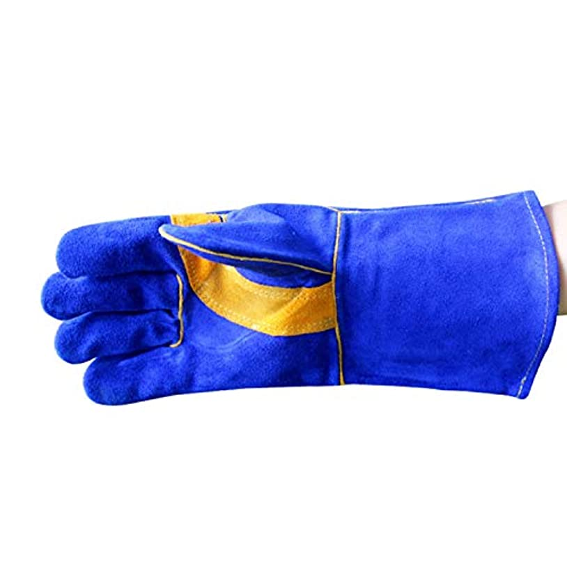 ジェームズダイソン記憶に残る飛躍キャンプグローブ レザー溶接手袋 - 耐熱性、耐火性、ガーデニング、オーブン、グリル、ミグ、暖炉、ストーブ、ポットホルダー、ティグ溶接機、バーベキュー用 耐熱グローブ (Color : Blue, Size : XL)