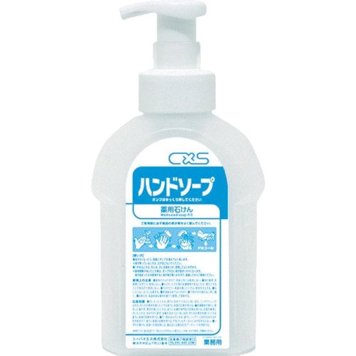乱闘オプショナルウェイターシーバイエス(C×S) 詰替え用ボトル ハンドソープボトル 600ml 6本入