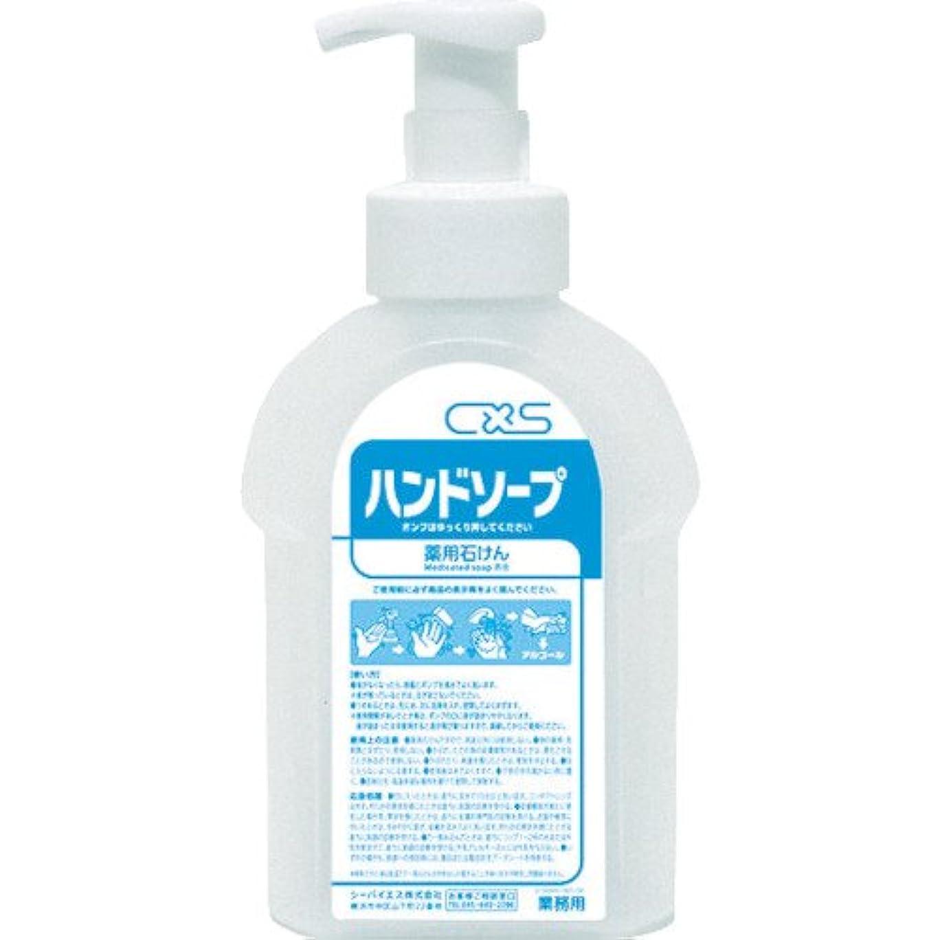 留まる中級コンパニオンシーバイエス(C×S) 詰替え用ボトル ハンドソープボトル 600ml 6本入