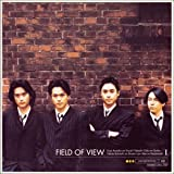FIELD OF VIEW �T