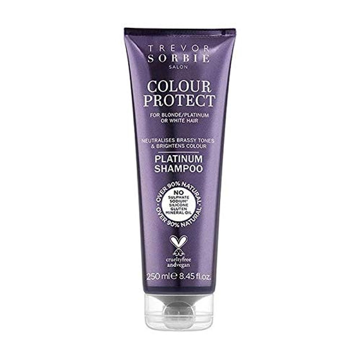打ち負かすウェイトレスロープ[Trevor Sorbie ] トレバー?ソアビー色はブロンド&プラチナシャンプー250Mlを保護します - Trevor Sorbie Colour Protect Blonde & Platinum Shampoo...