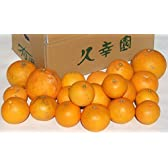 久幸園 完熟清見オレンジ【3kg】【訳あり】