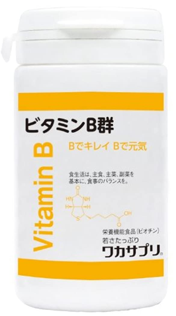 頻繁に不純おしゃれじゃないワカサプリ ビタミンB群 60粒 WVB060