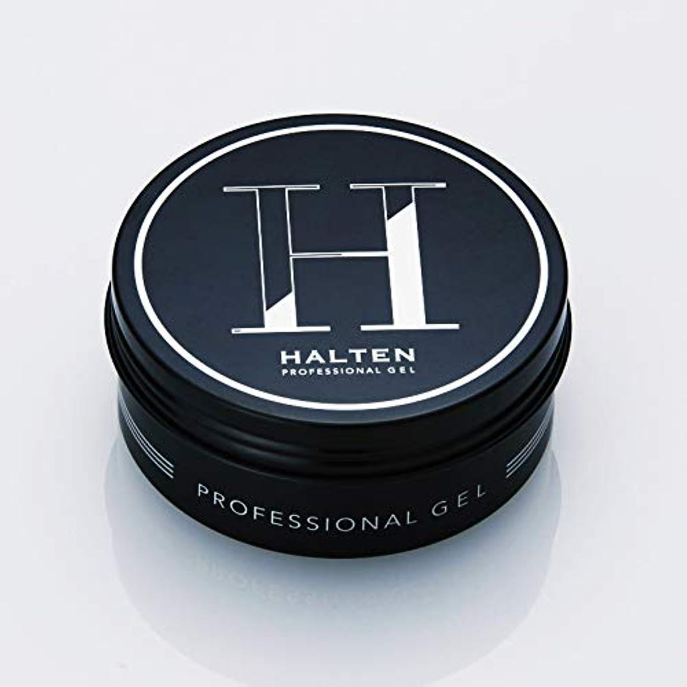 ドライバ細分化する港HALTEN PROFESSIONAL GEL