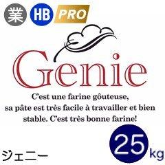 日本製粉 ジェニー フランスパン用 準強力粉 25kg 業務用