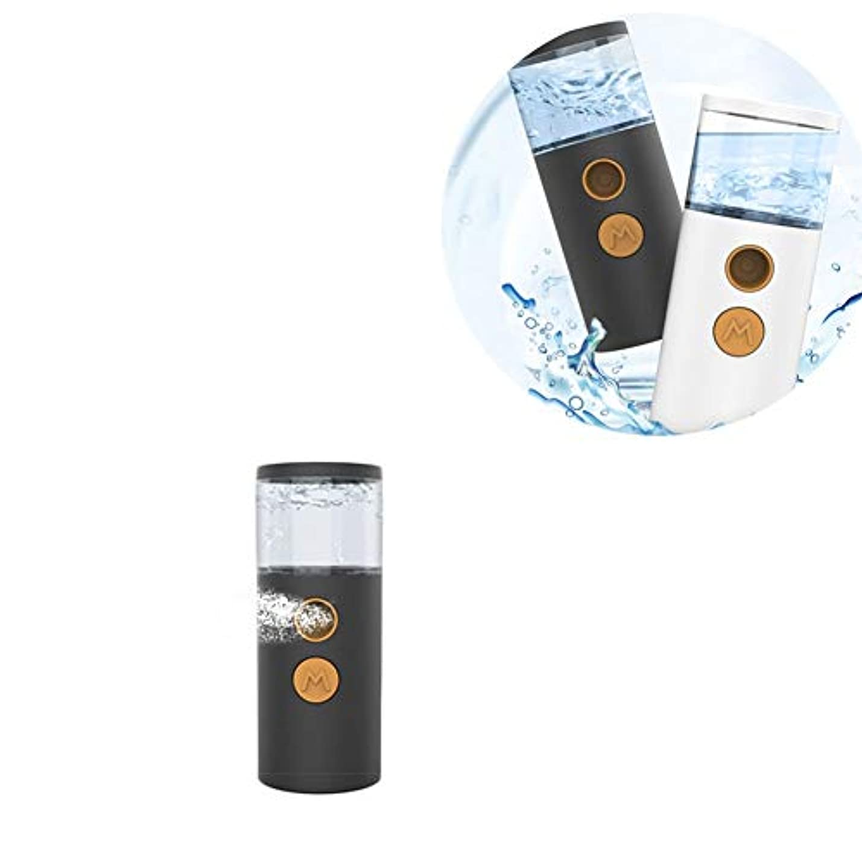 熱望する不安定な長さフェイシャルスチーム 補水美顔器 旅行 オフィス 乾燥肌対策 脂性肌  スキンケア コールドフォグ ギフト ABS (Color : White)