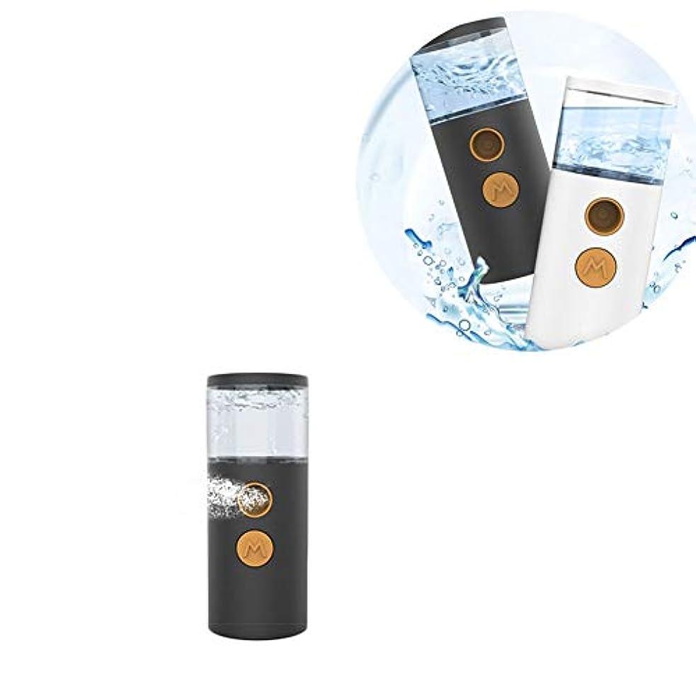 肯定的気球フェイシャルスチーム 補水美顔器 旅行 オフィス 乾燥肌対策 脂性肌  スキンケア コールドフォグ ギフト ABS (Color : White)