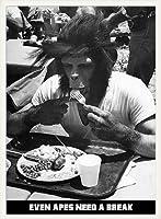ポスター アーティスト不明 Even Apes Need a Break 額装品 ウッドベーシックフレーム
