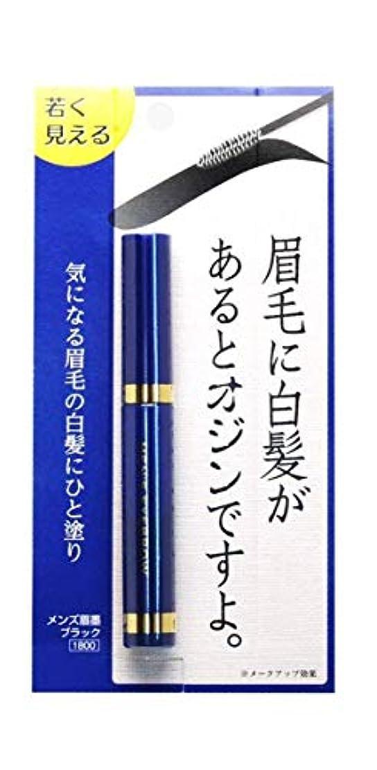 透けて見える絶望的な木ビナ薬粧 メンズ眉墨 2個セット