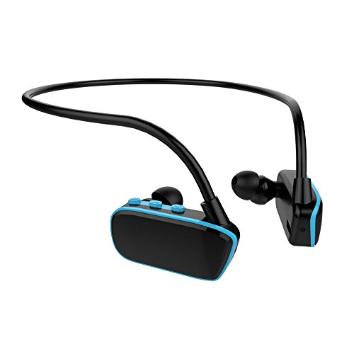 WINTECH『防水型デジタルオーディオプレーヤーAMP-624WP』