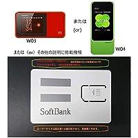 softbank 超大容量100GB prepaid DATA SIM (購入月+12ケ月, ルーターセット)