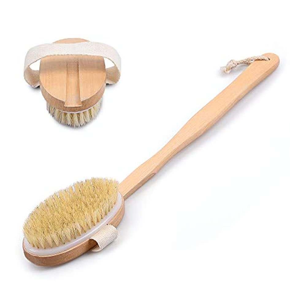 乳剤剃るクリックボディブラシ 背中ブラシ お風呂用 木製 長柄 ハンドル取り外し可能 背中を洗う 硬さソフト 角質除去 血行促進 両用可能