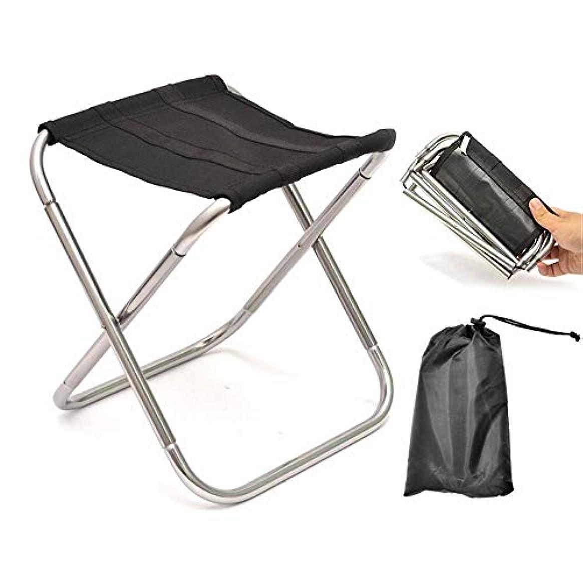 バイオリン呼びかける明らか快適な金属折りたたみ椅子ポータブル折りたたみスツール、超軽量コンパクトキャンプフットレストスツール、旅行に最適、屋外での休憩、屋外の庭に近い家事用