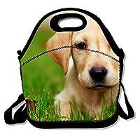 ランチバッグ 素敵な犬保温保冷 弁当バッグ ポケット付き ショルダーベルト