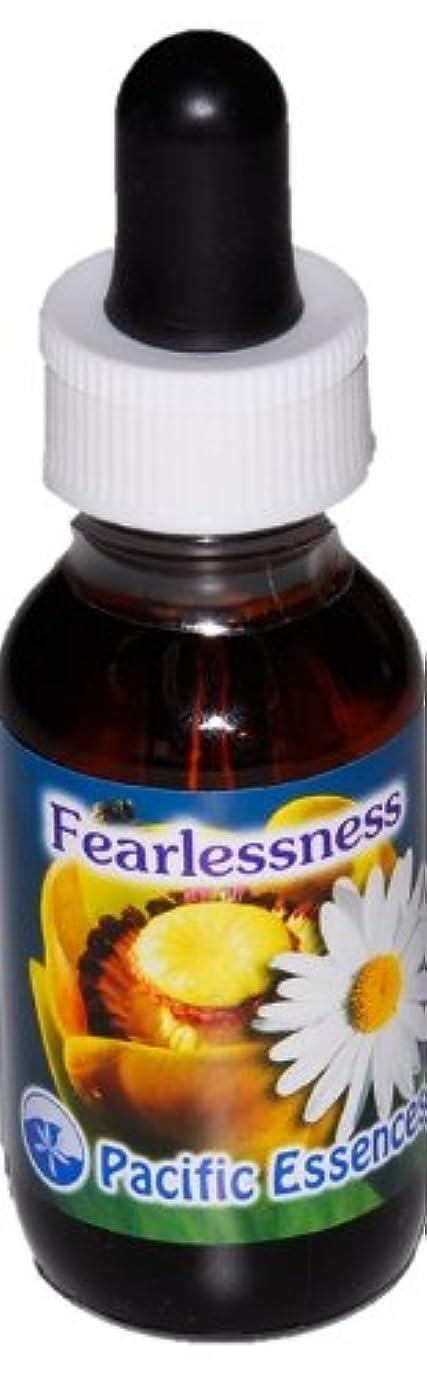 フィアレスネス ~ 恐れの解放 ~