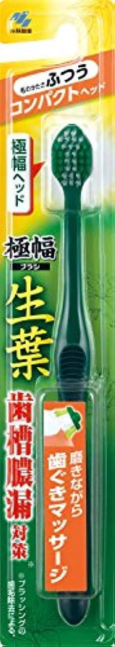 スキーうんざりそして生葉(しょうよう)極幅ブラシ 歯ブラシ コンパクトヘッド  ふつう