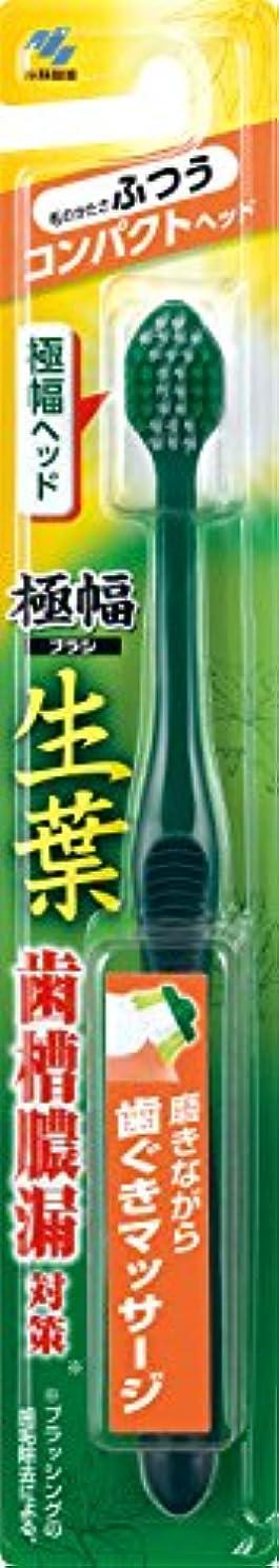 王子社会科大陸生葉(しょうよう)極幅ブラシ 歯ブラシ コンパクトヘッド  ふつう