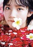 AKB48矢作萌夏1st写真集「自分図鑑」