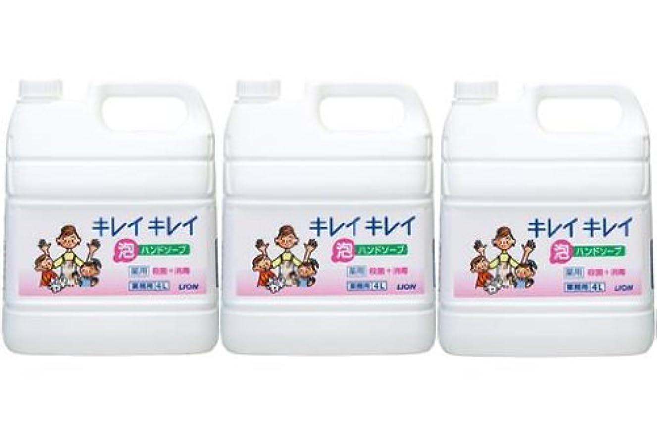 熟達した教育するしてはいけないライオン株式会社 キレイキレイ 薬用泡ハンドソープ 業務用 4L×3個セット