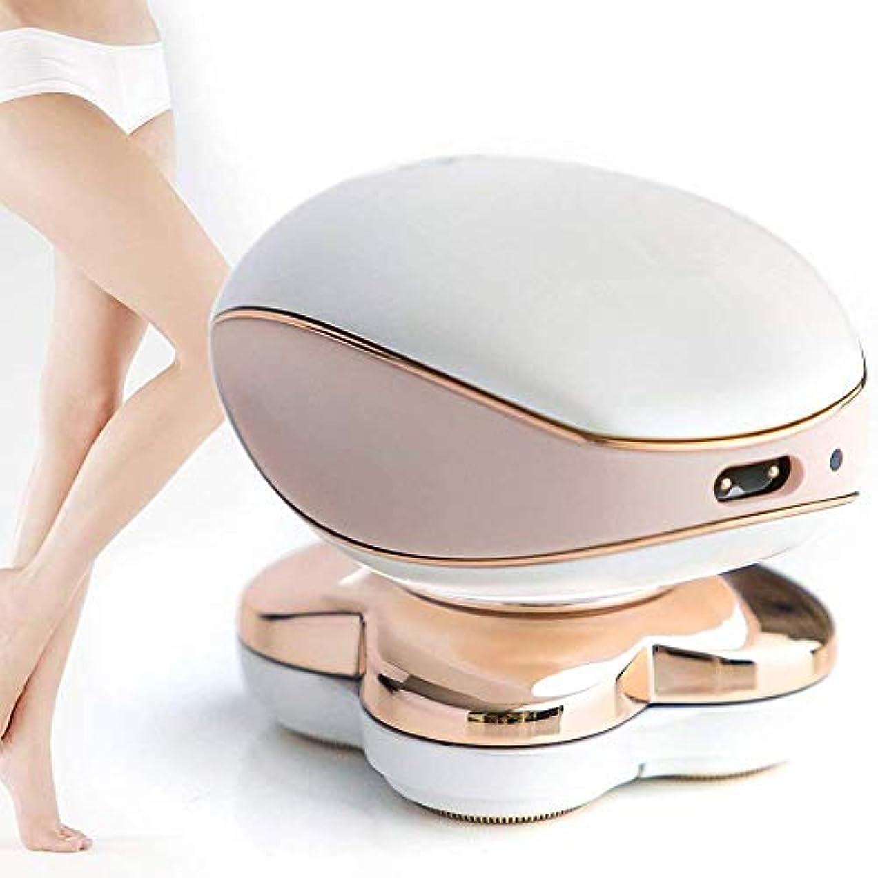 新鮮な社交的放射能女性の足のための痛みのない電気かみそりフェイスリップビキニエリア充電式インスタント脱毛器シェーバートリマー