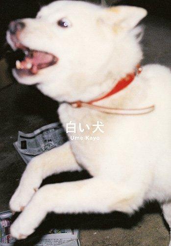 白い犬の詳細を見る